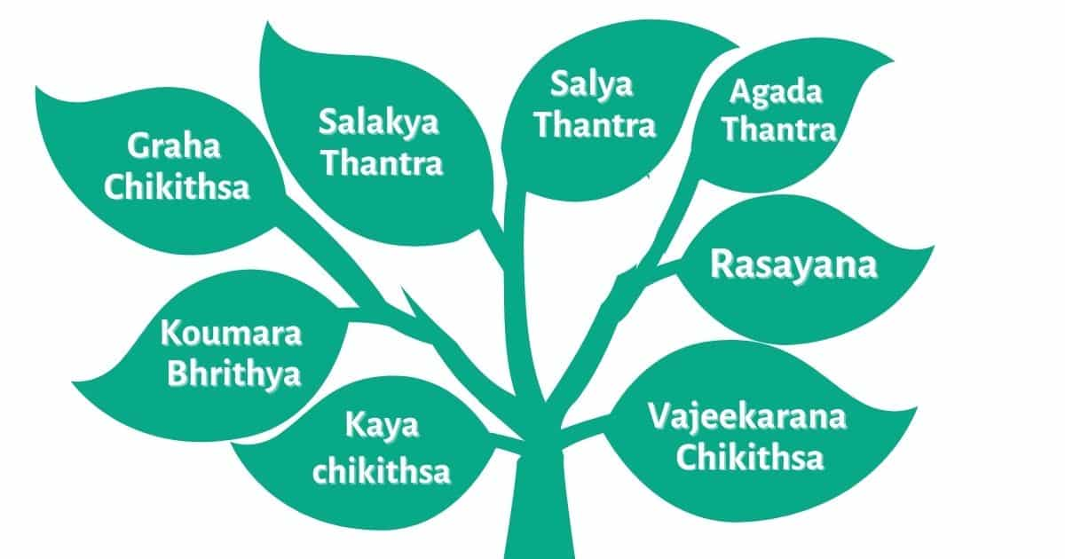 Branches of Ayurvedic Treatments